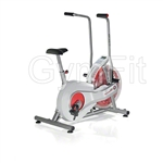 Schwinn Airdyne Air Cycle