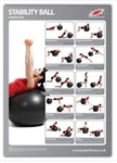 fitball poster