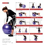 Gym Ball Instruction Chart Poster Beginner Intermediate & Advanced Set of 3