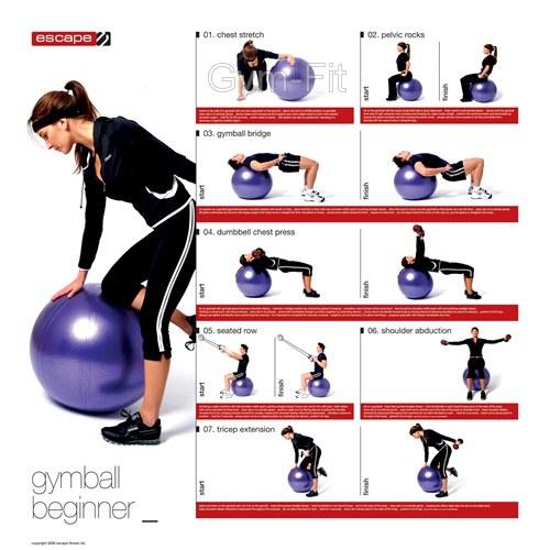 Gym Ball Instruction Chart Poster Beginner Intermediate & Advanced ...