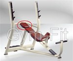 TECHNOGYM SELECTION LINE INCLINE BENCH CLASSIC HEAD REST BORDEAUX COLOUR