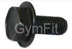 Indoor Cycle Crank Bolt