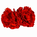Red Carnation Boutonnieres