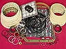 TH350 350 TRANSMISSION OVERHAUL KIT 69-79 WITH CLUTCHES STEELS BAND & BUSHINGS (44007)