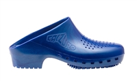Metallic Blue Calzuro Footwear