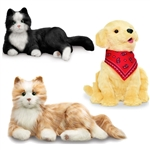 Companian Pets for Elderly - Canada