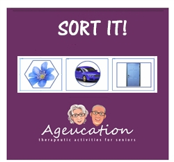 sort-it-activity-game-dementia-Canada