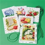 Lacing Activity Cards I Great Activity to Keep Hands Busy I Alzstore Canada