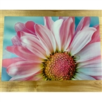 tool-shed-scentscapes-for-seniors-dementia-canada