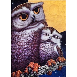 D'Art Diamond Embroidery - Owls