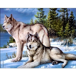 D'Art Diamond Embroidery - Wolves