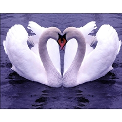 D'Art Diamond Embroidery - Swan Love