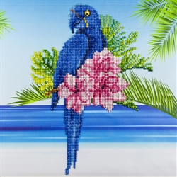Diamond Art - Blue Parrot