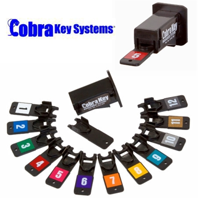 User Cards for Cobra Key Management Systems