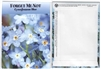 Forget Me Not Flower Seed Packets
