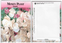 Money Plant Flower Seed Packets Blank