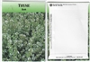 Thyme Herb Seed Packets - Blank