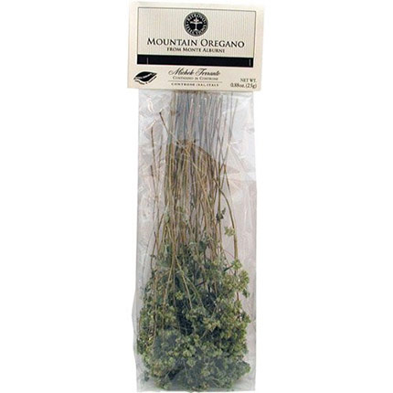Dried Mountain Oregano in Branches