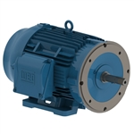 Weg 00736ET3E213JM-W22 Motor 7.5 HP, 3600 RPM, 3 Phase, 60 HZ, 208-230/460 Volt, Premium Efficient, TEFC, 213JM