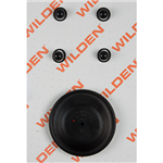 Wilden 02-9814-52 Wet Kit, 1'' Advance Bolted, All Materials, Buna-N (1'' A/M/BNS)