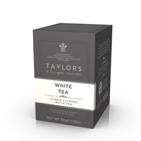 Taylors White Tea 6x20