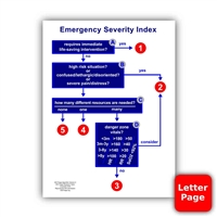 "ESI Algorithm & Details/Definitions 8.5""x11"" Laminated Page"