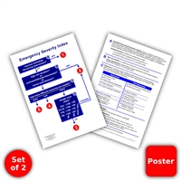 "ESI Poster 13"" by 19"" - Set of 2"