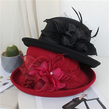 Feather Mesh Bowler Top Hat C0081