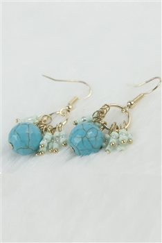 Turquoise Earrings E2020