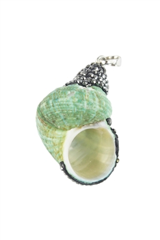Hot Sale Conch Shell Necklace Pendants P0015