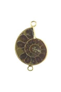 Snail Pattern Ammonoidea Stone Necklace Pendants P0039
