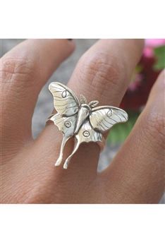 Butterfly Alloy Rings R1647