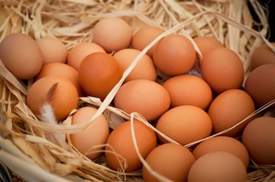 High Welfare - Farm Fresh Eggs ( 3 or more dozen discounted)