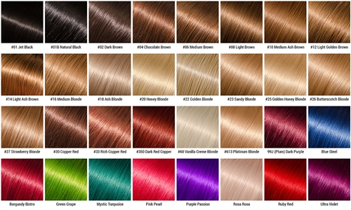 shades of brunette chart: Hollyhood virgin hair color chart