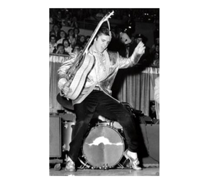 Must Have Music Poster - Elvis Hips Poster - Cool Dorm Decor