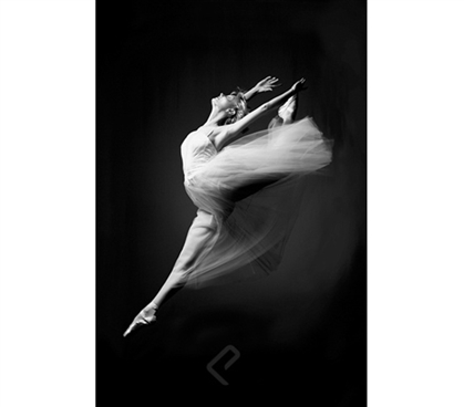 Ballerina - Grace In Motion Poster - Keep Your Dorm Room Cute and Classy With This Poster