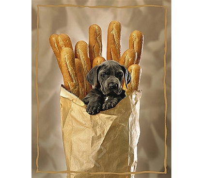 Stylish Puppy with Baguettes  Poster