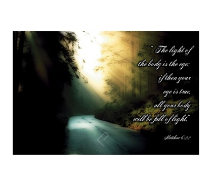 Beautiful The Light Wilderness Poster