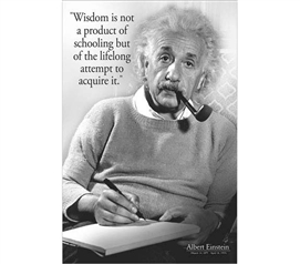 Smart Posters For Dorms - Einstein Wisdom Poster - Decorations For College
