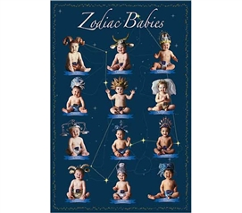 Warming Dorm Decoration - Zodiac Babies  Poster - Cute Poster For Dorms