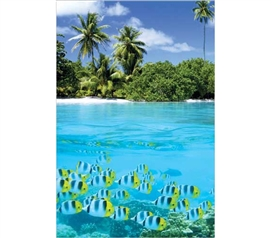 Brings A Fesh Scene To Your Dorm - Tropical Scenery II Poster - Great Dorm Decoration
