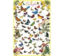 Beautiful Butterflies On Your Dorm Wall - A Vibrant Dorm Wall Poster made for Nature Lovers