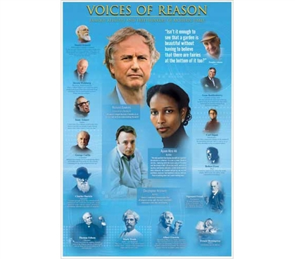 Products For Dorm Rooms - Voices Of Reason Poster - Smart Poster For College
