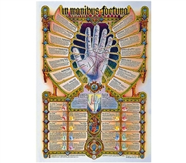 Dorm Room Decorations In Manibus Fortuna Poster
