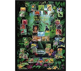 Tropical Rain Forest Animal Collage - Cheap Dorm Room Poster For College Wall