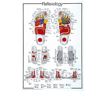 Reflexology of the Foot - Unique Wall Poster