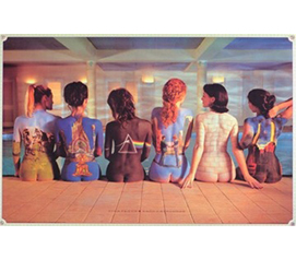 A Refreshing Poster for Music Fans - Pink Floyd Back Catalogs Poster