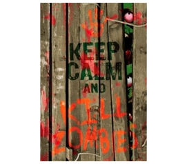 Add Character To Your Dorm - Keep Calm And Kill Zombies Poster - Cray College Item