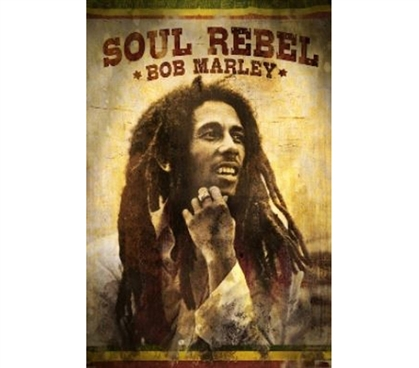 Fun Dorm Supply - Bob Marley Soul Rebel Poster - Great Music Poster