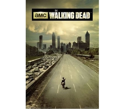 Add Fun Dorm Stuff - The Walking Dead Season 1 Poster - Perfect For Fans